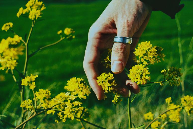 Man s hand touching a flower