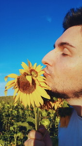 Young man kiss a sunflower