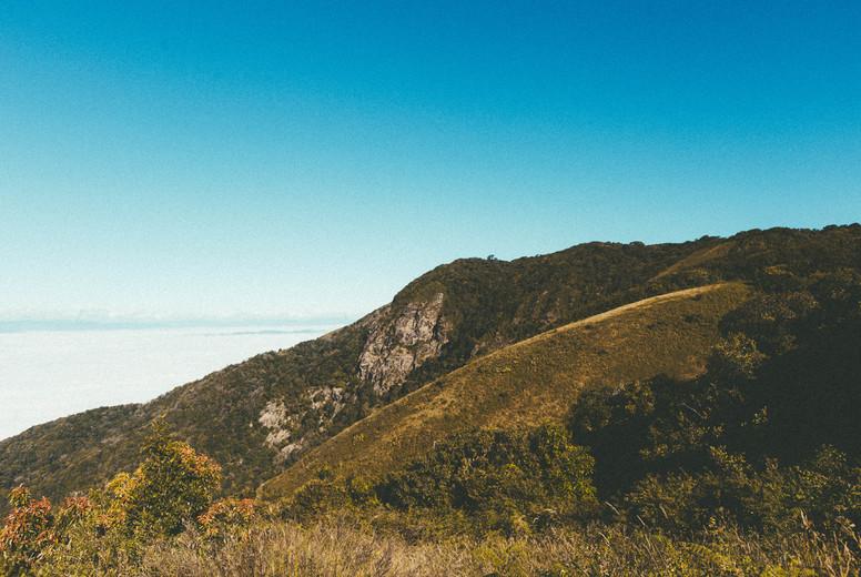 Morning mist on mountains  04