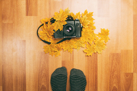Camera leaves and feet