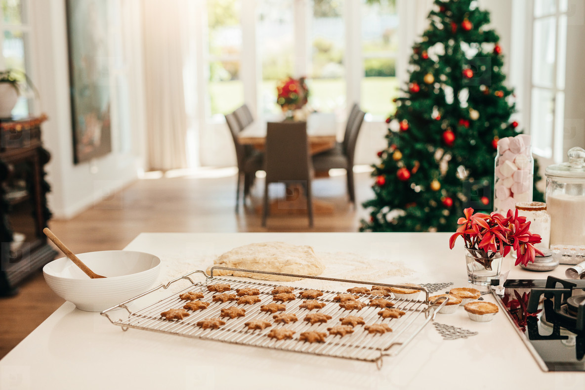 Baked cookies for Christmas celebrations