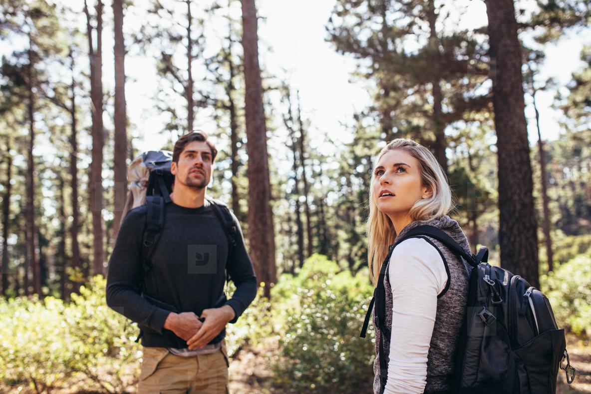 Hiker couple trekking in forest