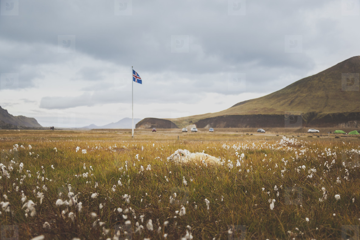 Flag in Landmannalaugar Iceland