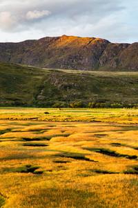Scotland sunlight