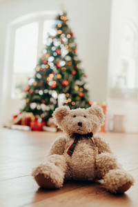 Teddy bear as Christmas gift for children