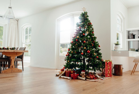 Christmas celebrations with beautifully decorated Christmas tree