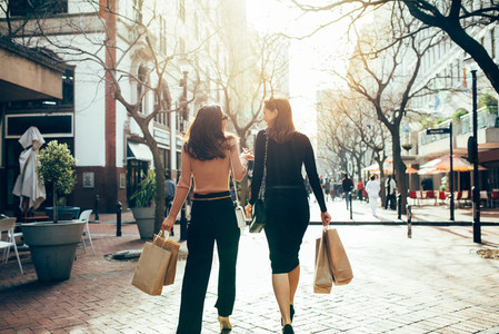 Female shoppers carrying shopping bags on road