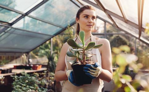 Female worker working at garden center