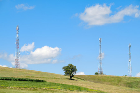 The tree and the antennas