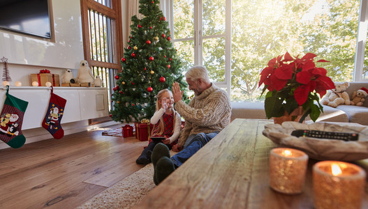 Mature man giving high five to his granddaughter at home