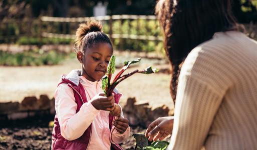 Little girl helping her mother in the garden