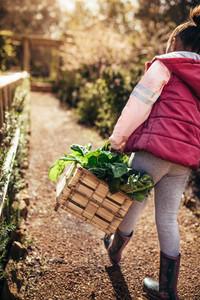 Little girl with basket walking through garden