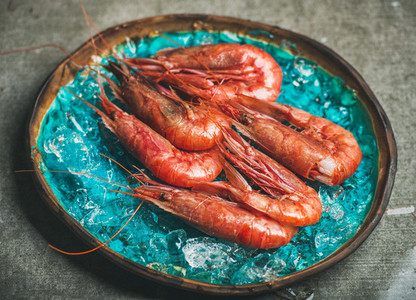 Raw uncooked red shrimps on chipped ice  selective focus