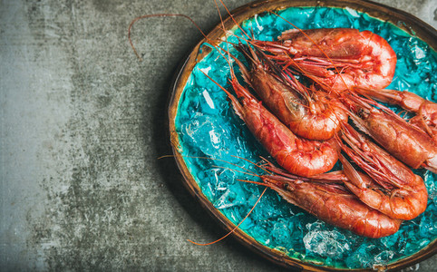 Raw uncooked red shrimps on chipped ice grey concrete background