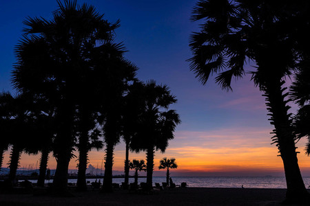 Beautiful Sunset at seaside with palm trees  water reflection  s