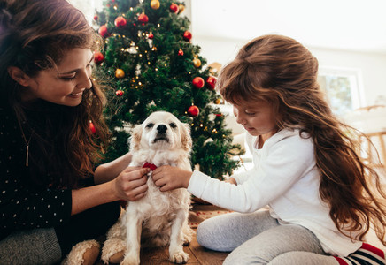 Mother and daughter tying a bow tie to their dog on Christmas