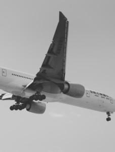 Landing 14