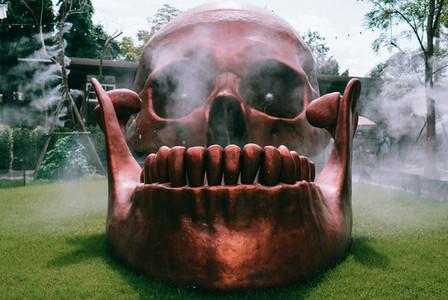 Skull Mist