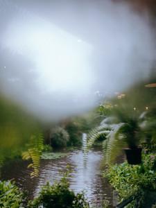 Rainy Window View