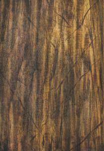 Natural brown oak wooden texture