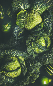 Raw fresh uncooked green cabbage texture and background
