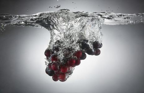 Fresh Food Splash 05