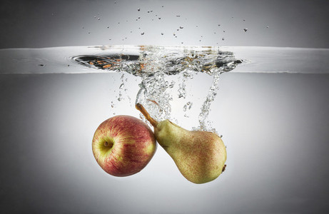 Fresh Food Splash 13