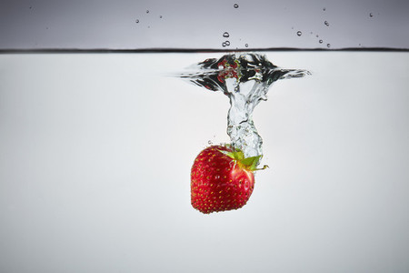 Fresh Food Splash 34