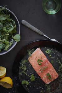 Fresh Food Splash 36