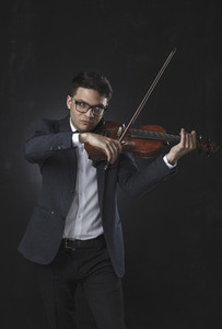 The Violinist 14
