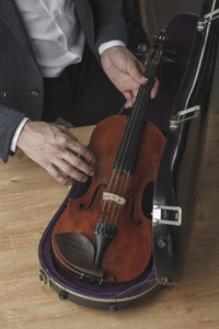 The Violinist 15