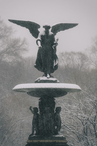 Snowing in Central Park