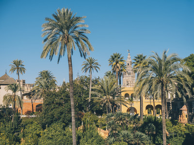 View of the Royal Gardens of the Alcazar of Seville