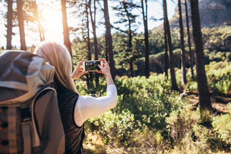 Woman hiker taking photograph in forest