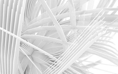 abstract organic shape