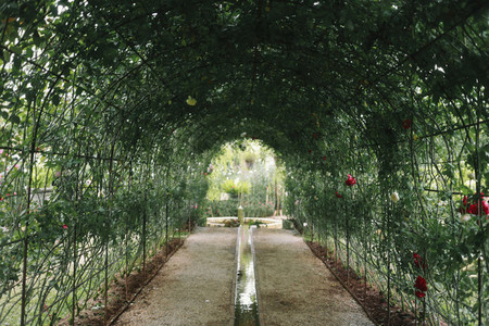 Flower tunnel