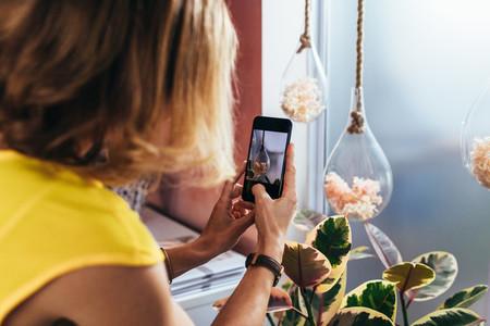 Florist taking photographs of hanging flower