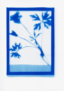 Botanical Frames 18