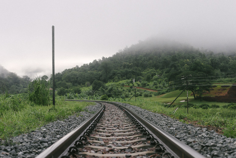 Curve railway along the forest