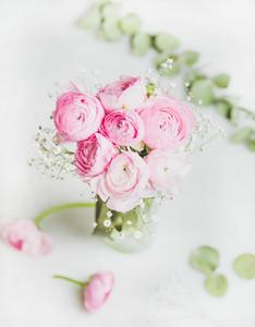Light pink ranunkulus flowers in vase on white background