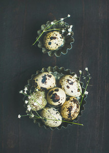 Quail eggs in molds and dried wild flowers for Easter
