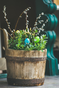 Green plants  colored eggs  willow tree branches in wooden tub