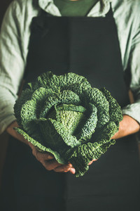 Man wearing black apron keeping fresh green cabbagein in hands