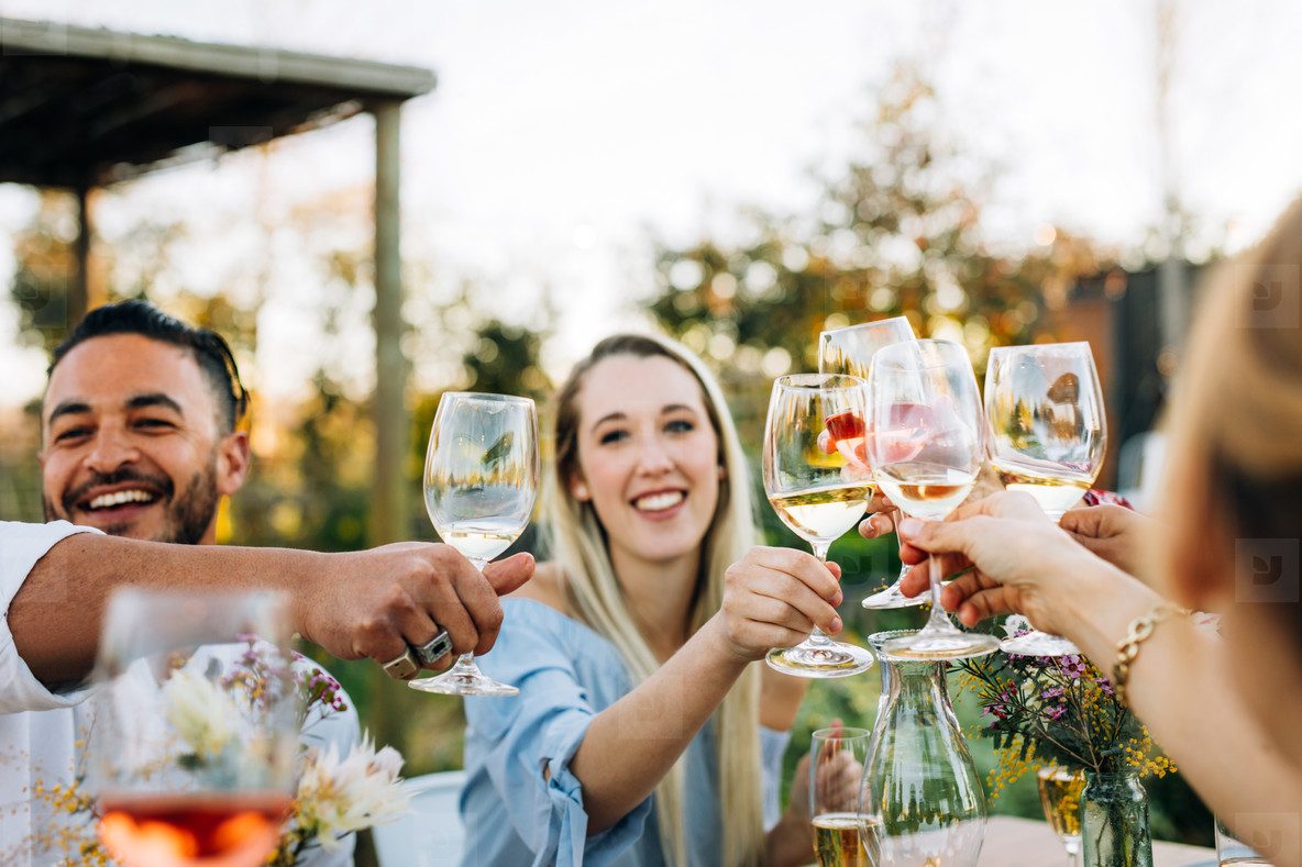 Friends toasting wine and having fun at party