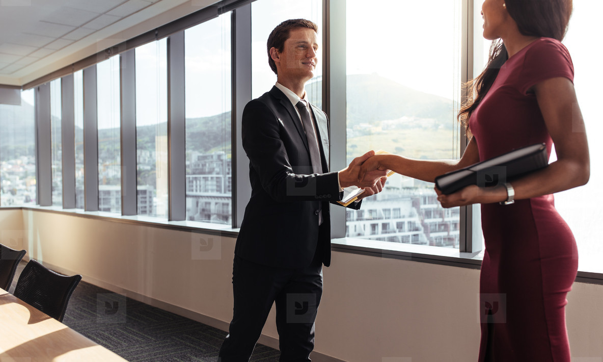 Business handshake after successful meeting