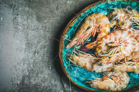 Raw uncooked tiger prawns on chipped ice  grey background