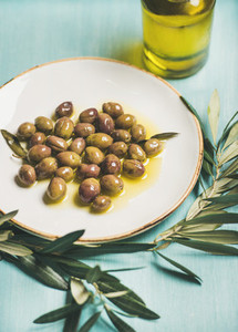 Pickled green olives  olive tree branch  virgin oil  selective focus