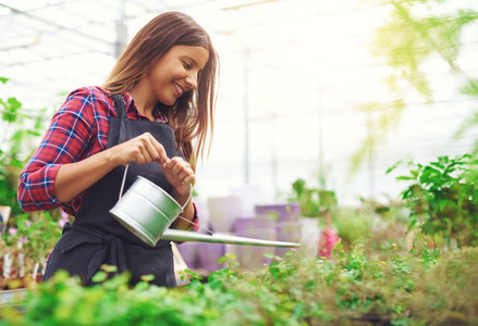 Young nursery owner watering potted plants