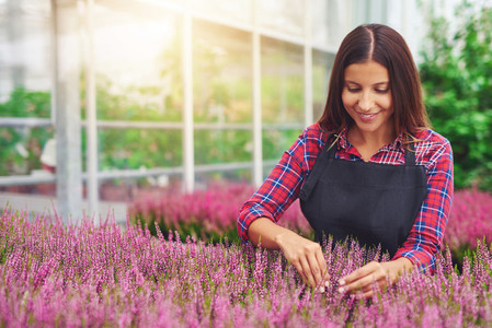 Young woman working in a greenhouse tending plants