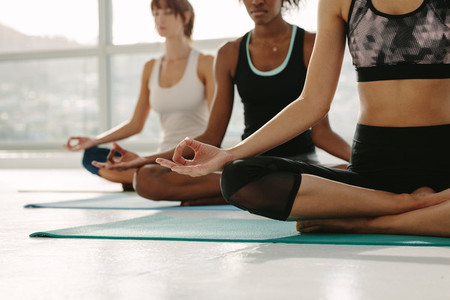 Group of women meditating in Padmasana yoga